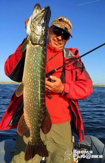 рыбалка в этом году лысый лиман