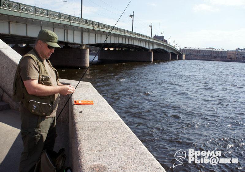 река шелонь рыбалка где лучше ловить