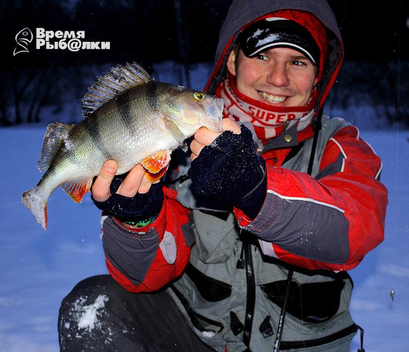 Ловля окуня на открытой воде зимой