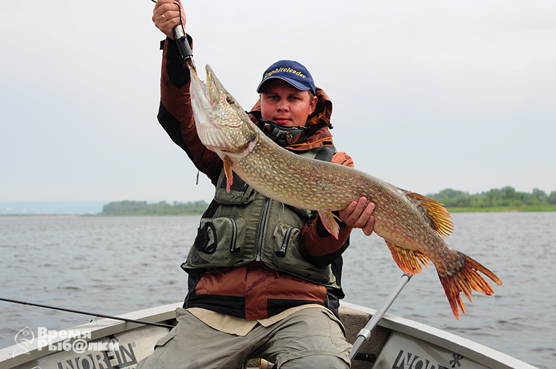 кашпир сызрань рыбалка