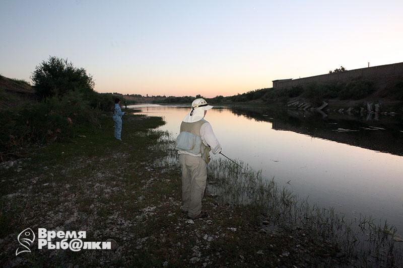 рыболовные интернет магазины в узбекистане